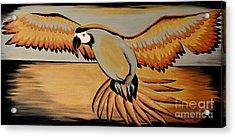 Metallic Macaw Acrylic Print