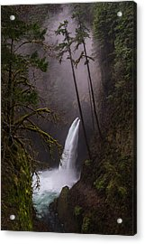 Metlako Falls Oregon Acrylic Print by Larry Marshall