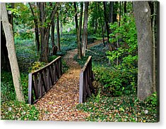 Metroparks Pathway Acrylic Print by Frozen in Time Fine Art Photography