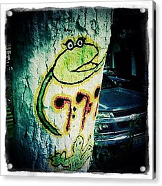 Mexican Graffiti Tree Art (puerto Acrylic Print