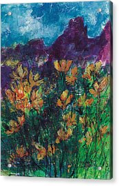 Mexican Poppies Acrylic Print
