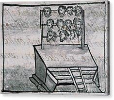 Mexico - Skull Rack Acrylic Print by Granger