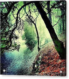 #mgmarts #nature #fog #visionary Acrylic Print by Marianna Mills