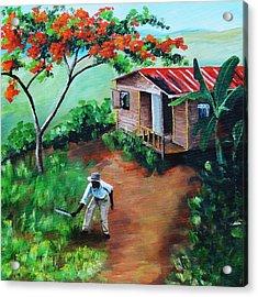 Mi Flamboyan Acrylic Print by Migdalia Bahamundi