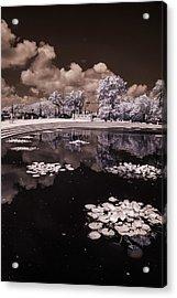 Miami Beach Lake Acrylic Print