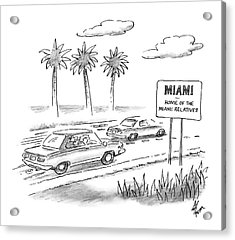 Miami:  Home Of The Miami Relatives Acrylic Print by Frank Cotham