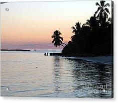 Acrylic Print featuring the photograph Miami Palms by Shelia Kempf