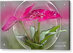 Micro Spheres Acrylic Print