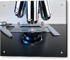 Microscope Slide Acrylic Print by Tek Image