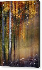 Mid-october Acrylic Print