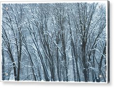 Acrylic Print featuring the photograph Mid-winter Storm by Jonathan Nguyen