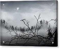 Midnight Beauty Acrylic Print by Lourry Legarde