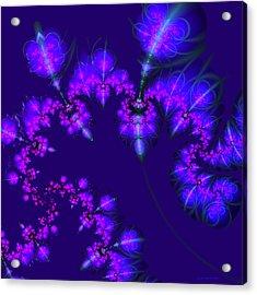 Midnight Blossoms Acrylic Print