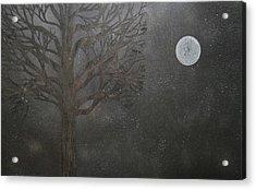 Midnight Calm Acrylic Print by Drew Shourd