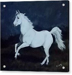 Midnight Dancer Acrylic Print