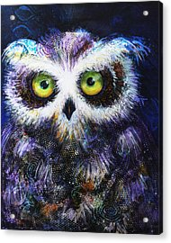 Midnight Hoot Acrylic Print