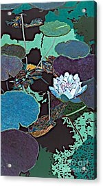 Midnight Moonglow Acrylic Print by Allan P Friedlander