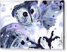Midnight Owl Acrylic Print by Dawn Derman