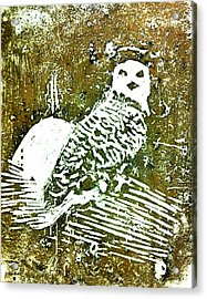 Acrylic Print featuring the painting Midnight Owl by Shabnam Nassir