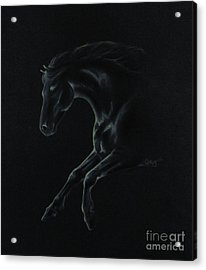 Midnight Run Acrylic Print