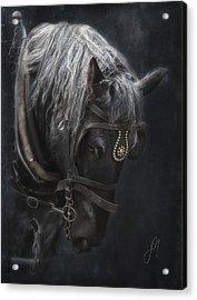 Midnight Silver Acrylic Print