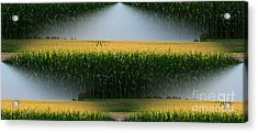 Midwest Gold Acrylic Print by Luther Fine Art