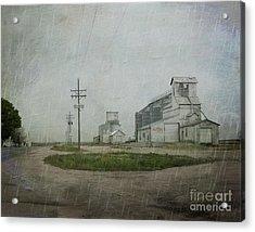 Midwest Prairie Feed Grain Acrylic Print by Juli Scalzi