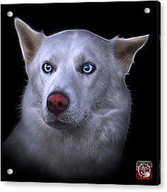 Mila - Siberian Husky - 2103 - Bb Acrylic Print