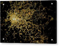 Milan At Night From Space Acrylic Print