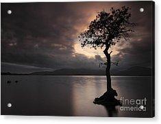 Milarrochy Bay Sunset Acrylic Print