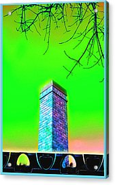 Mildrena's Chimney - Branches Acrylic Print by Wendy J St Christopher