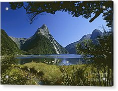 Acrylic Print featuring the photograph Milford Sound  New Zealand by Rudi Prott