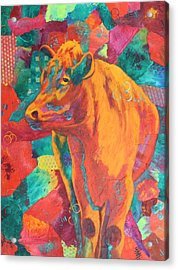 Milk Delivery Acrylic Print by Nancy Jolley