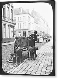 Acrylic Print featuring the photograph Milk Wagon Street Scene Germany C 1900 Vintage Photo by A Gurmankin
