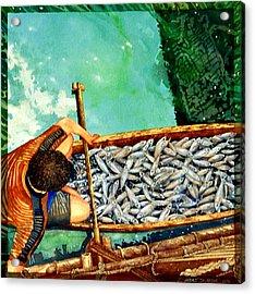 Milkfish Harvest Vers1 Acrylic Print