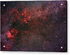 Milky Way And Cygnus Acrylic Print by Babak Tafreshi