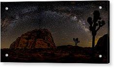Milky Way Over Joshua Tree Acrylic Print by Peter Tellone