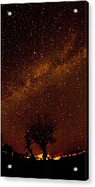 Milky Way Tree Acrylic Print