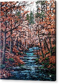Mill Creek Acrylic Print by W  Scott Fenton