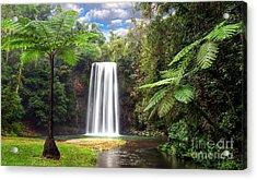 Milla Milla Falls Acrylic Print by Shannon Rogers