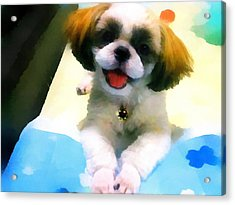 Mimi's Smile Acrylic Print by Tony Chong