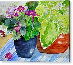 Mimi's Violets Acrylic Print by Beverley Harper Tinsley