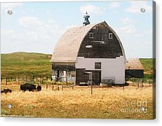 Minden Nebraska Old Farm And Barn Acrylic Print