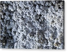 Mineral Texture Acrylic Print by Pablo Romero