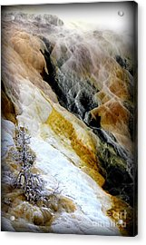 Minerals And Stream Acrylic Print by C Ray  Roth