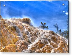 Minerva Terrace Acrylic Print by Jeff Donald
