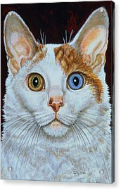 Minette Acrylic Print by Ditz