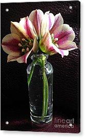 Mini Bouquet Acrylic Print