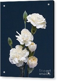 Mini Carnations Acrylic Print by ELDavis Photography