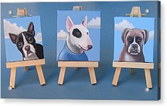 Mini Dog Portraits 2 Acrylic Print by Stuart Swartz